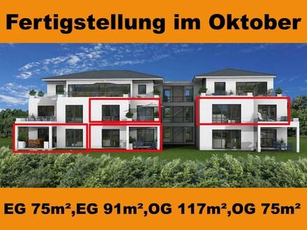 Wir bauen schon! Hochwertiges Wohnhaus mit 8 Eigentumswohnungen -KfW55- in Bünde