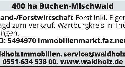400 ha Buchen-Mischwald – Land-/Forstwirtschaft – Forst inkl. Eigenjagd