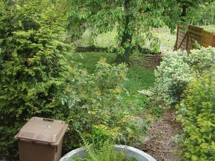 Einbl. in den Garten