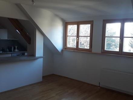 Charmante 2 ZI-Dachgeschosswohnung zu vermieten