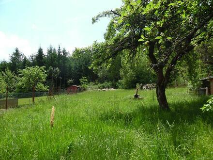 Baugrundstück in Weiden