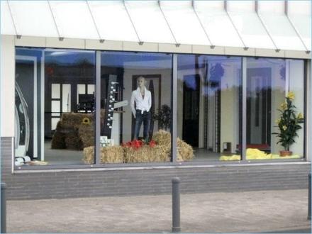 MAINZ-WEISENAU ~ 700 m² Gewerbefläche (400 m² Büro/Praxis + 213 m² Lager +Nebenfl.+Parkplätze)