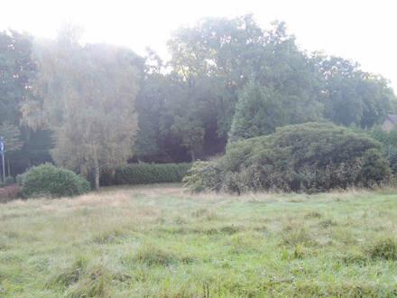 Baugrundstück am Ortsrand der Gemeinde Bippen
