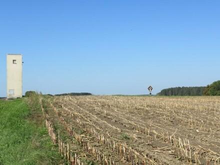 Einmalige Möglichkeit! Sehr gut erreichbares Agrarland in der Nähe von Traunwalchen!