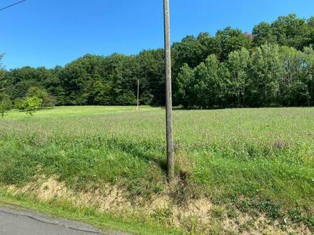 Nähe Güssing: Großes Grundstück in sonniger Lage