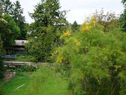 Purkersdorf, parifizierter Grundstücksanteil
