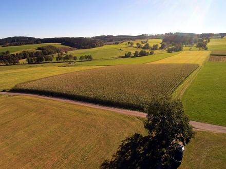 Erstklassiges Ackergrundstück ca. 14.780 m² mit bester Zufahrt in Honsolgen bei Buchloe