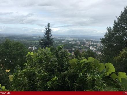 Ausblick über Reutlingen