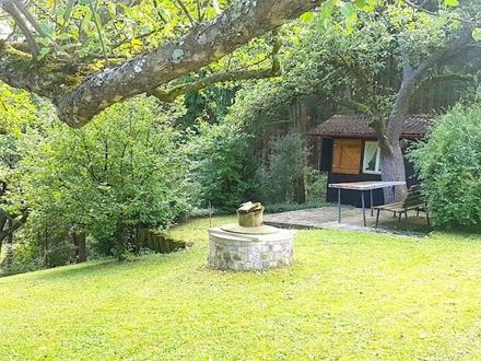 Wochenendgrundstück mit Privatwald und herrlichem Ausblick in Bad Überkingen - VB: 65.000,00 EUR -