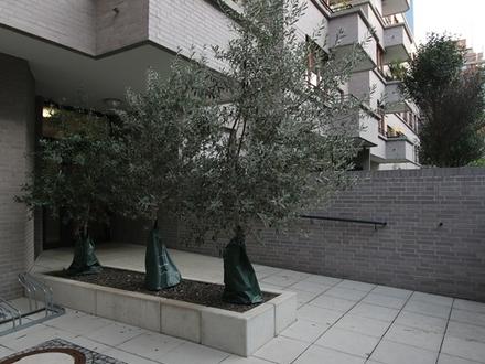 Großzügige und moderne Wohnung mit Balkon und Loggia