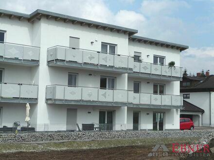 Helle, neue 3-Zimmer-Wohnung - KfW 55 Standard - in Plattling Zentrum zur Miete