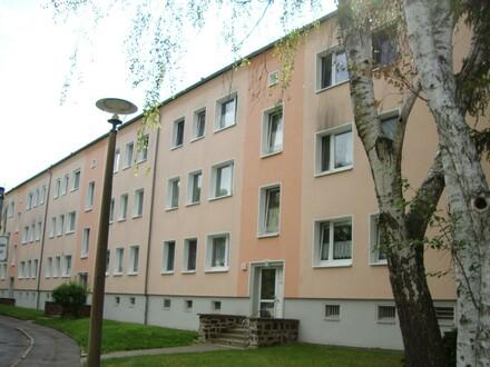 3-Raum-Wohnung in ruhiger, grüner Lage