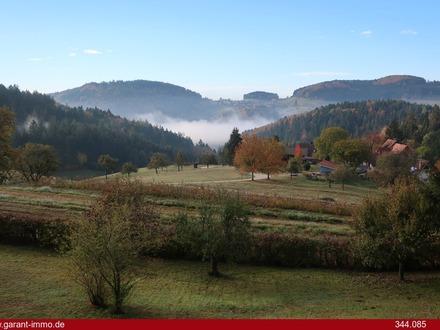 Liebhaberobjekt mit Traumpanorama und doch nur ca. 35 Autominuten von Basel entfernt