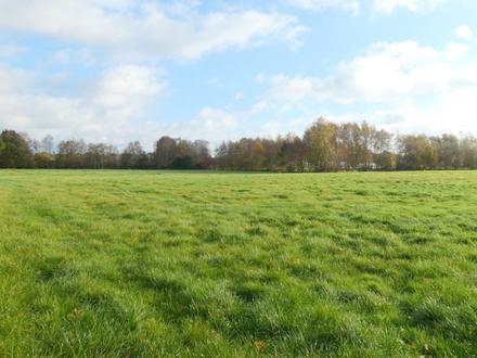 Ca. 2,5 ha Grünlandfläche in Bad Zwischenahn-Fintlandsmoor