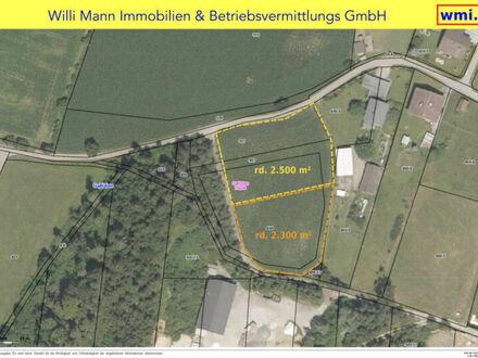 Gallizien: Großes, ebenes Grundstück (diverse Größen möglich: 4.800 m² / 2.500 m² / oder 2.300m²)
