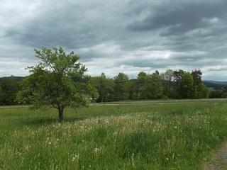 Alleinlagehof mit 1,8 ha arrondierter Fläche im schönen LK Cham