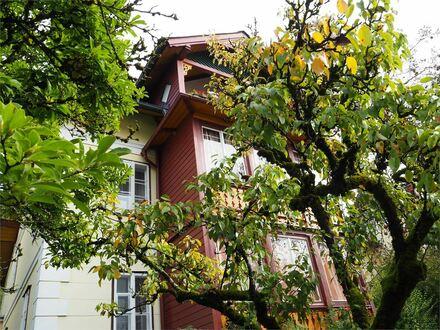 Sonnige charmante 3 Zimmer Dachgeschoßwohnung mit Terrasse Bad Ischl