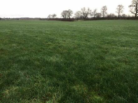 Zwangsversteigerung: Landwirtschaftlicher Betrieb mit ca. 25 Hektar Landwirtschaftsfläche
