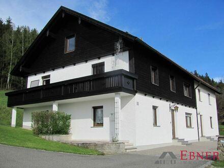 Sehr schöne, geräumige 2-Zimmer-Wohnung in Teisnach zu vermieten