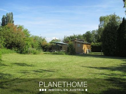Kleingartengrundstück mit Holzhäuschen