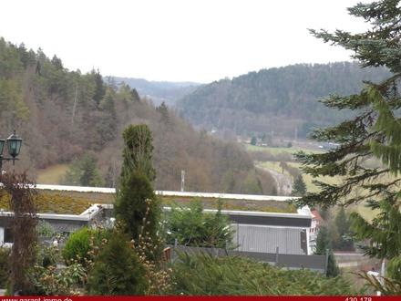 Typischer Bauplatz mit Fernsicht im Schwarzwald
