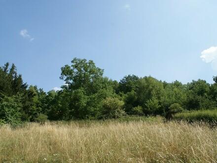 Herrlich groß - Baugrundstück mit ca. 898 m² mit angrenzendem Wiesengrundstück mit ca. 2.413 m²