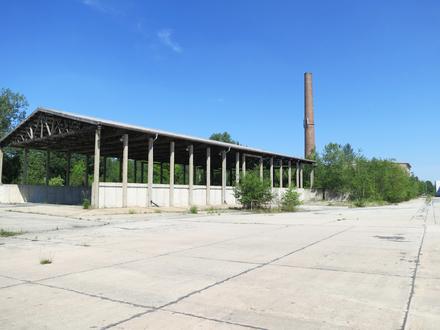 Offene Lagerhalle mit 1.000 m² zur Miete!