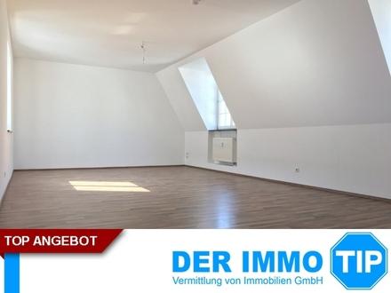 Großzügige 4 Zimmerwohnung mit Stellplatz über den Dächern von Chemnitz ++ Zentrum