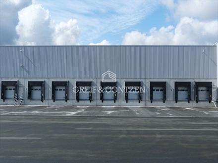 Projektierte Logistik-/Büroflächen