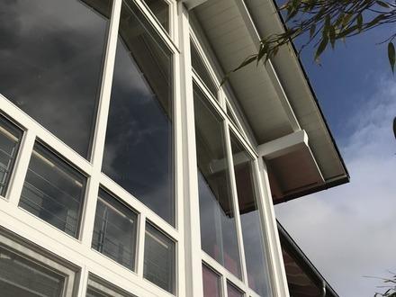 Modernes, helles Einfamilienhaus in unmittelbarer Rheinnähe