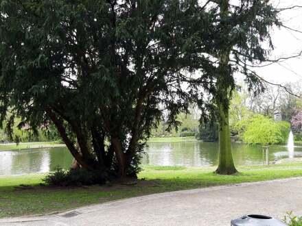 Residenz Am Stadtgarten in Gelsenkirchen - 15. OG