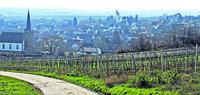 Schweigen-Rechtenbach:Am Weintor ist gut wohnen