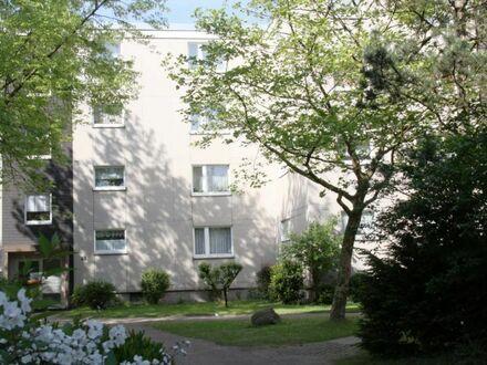 """Frisch renoviert und zu sofort - """"Freie Scholle eG"""""""