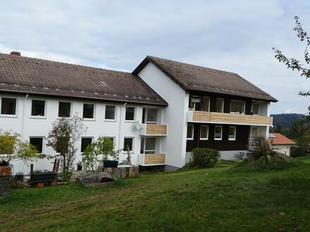Renovierte 3-Zimmerwohnung in ruhiger Lage und Fernblick