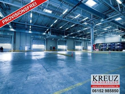 Neubau: 15.000 m² Lager- und Logistikflächen in Gernsheim (Autobahnnähe)