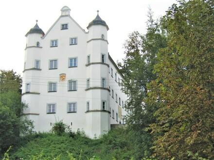 Wohnen im Schloss: Außergewöhnliche 4-Zimmer-Wohnung bei Leutkirch