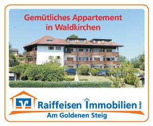 Gemütliches Appartement mit schöner Aussicht in der Stadt Waldkirchen