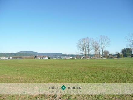 Gewerbegrundstück im Gewerbegebiet von Neumarkt Pfongau - Mitte