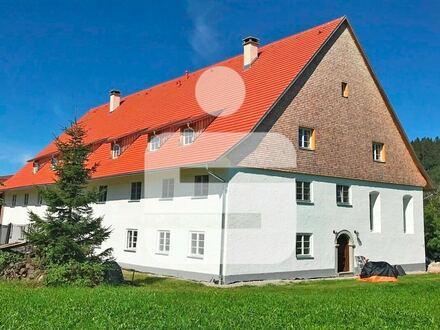 Heimelige Dachwohnung im Grünen
