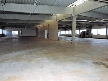 zu Vermieten - Lager-/Produktionshalle mit Büro und Sozialtrakt