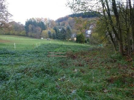 Schönes Baugrundstück in idyllischer Lage von Siegen-Breitenbach