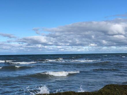 Insel Poel - 750qm Traumgrundstück