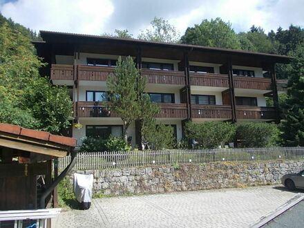 """*Mitten im Urlaubs- und Feriengebiet: im """"Bergdorf Sachrang"""" renov./saniertes 1-Zimmer-Apartment in sehr ruhiger, sonniger…"""