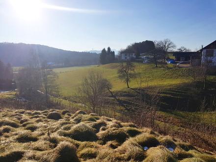 Grundstück in sonniger Aussichtslage