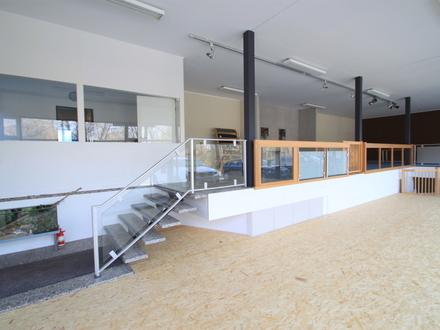 Ausstellungsfläche, Verkaufsraum, Bürofläche im Norden von Braunschweig