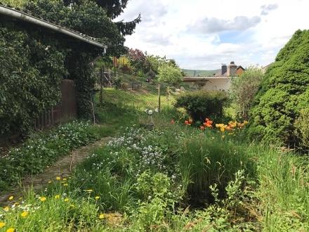 Günstiges Baugrundstück in Rüdesheim-Aulhausen für kleines Einfamilienhaus