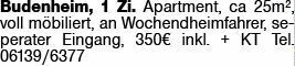 1-Zimmer Mietwohnung in Budenheim