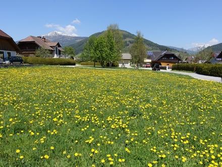 Sonnig und ruhig gelegenes Baugrundstück in der Skiregion Lungau