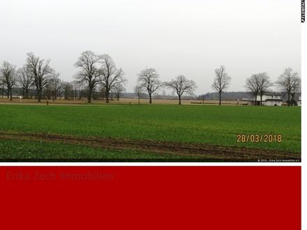Zwei teilerschlossene Baugrundstücke in 19230 Alt Zachun