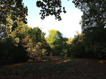 Grundstück Bild I
